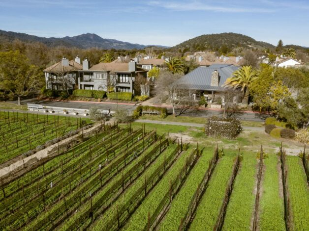 aerial of the estate and vineyard