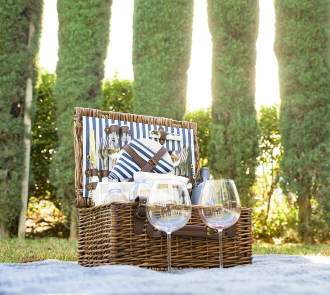 lunch basket and wine in the vinyard